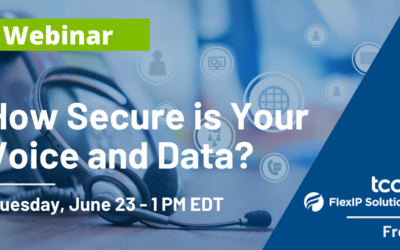 Webinar: How Secure is Your Voice & Data?